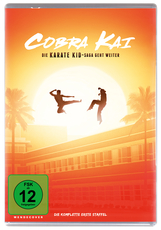 Cobra Kai Season 1