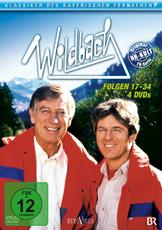 Wildbach 2