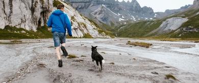 Cody - Wie ein Hund die Welt verändert Szenenbild 2