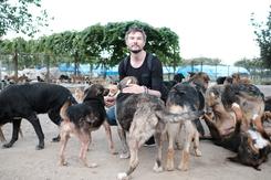 Cody - Wie ein Hund die Welt verändert Szenenbild 11