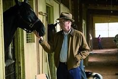 Meine liebsten Pferdefilme Szenenbild 3