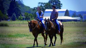 Meine liebsten Pferdefilme Szenenbild 5