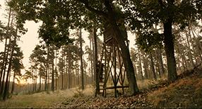 Auf der Jagd Szenenbild 3