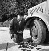 Die seltsamen Methoden des Franz Josef Wanninger - Box 2 Szenenbild 4