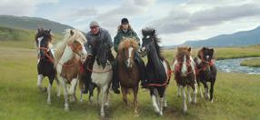 Von Menschen und Pferden Szenenbild 2