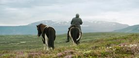 Von Menschen und Pferden Szenenbild 4