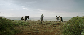 Von Menschen und Pferden Szenenbild 5