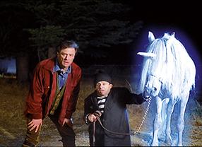 Ich liebe Pferde Szenenbild 4