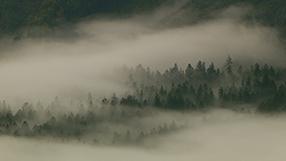 Baden-Württemberg von oben Szenenbild 3