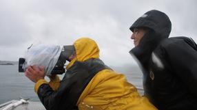 Blackfish - Der Killerwal Szenenbild 5