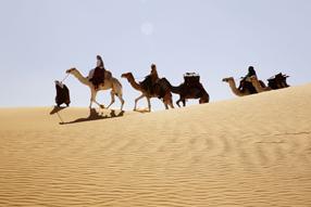 Königin der Wüste Szenenbild 3