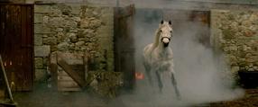 Die Legende der weißen Pferde Szenenbild 2
