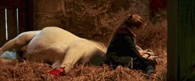 Die Legende der weißen Pferde Szenenbild 6