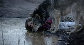 Wild Szenenbild 4