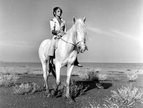 Ein Leben für Pferde Szenenbild 6