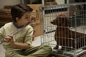 Wiener Dog Szenenbild 4