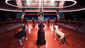 Dog Patrol Szenenbild 1