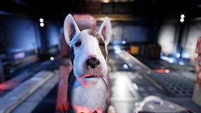 Dog Patrol Szenenbild 3