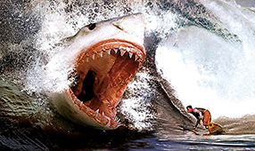 Shark Box XXL Szenenbild 2